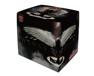 RA530102 Wings of Desire 24 shots Cake
